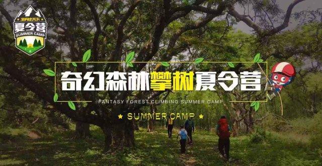 杭州出发 --【华东大区】2019奇幻森林攀树夏令营