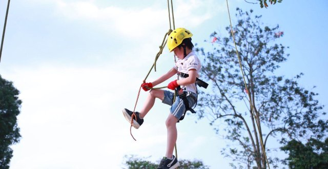 【杭州】我们趣攀树