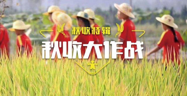 【杭州】秋收大作战